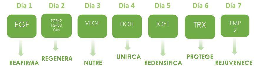FACTOR G RENEW Ampollas bioestimulantes