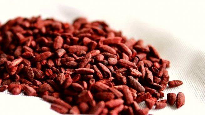 levadura de arroz rojo